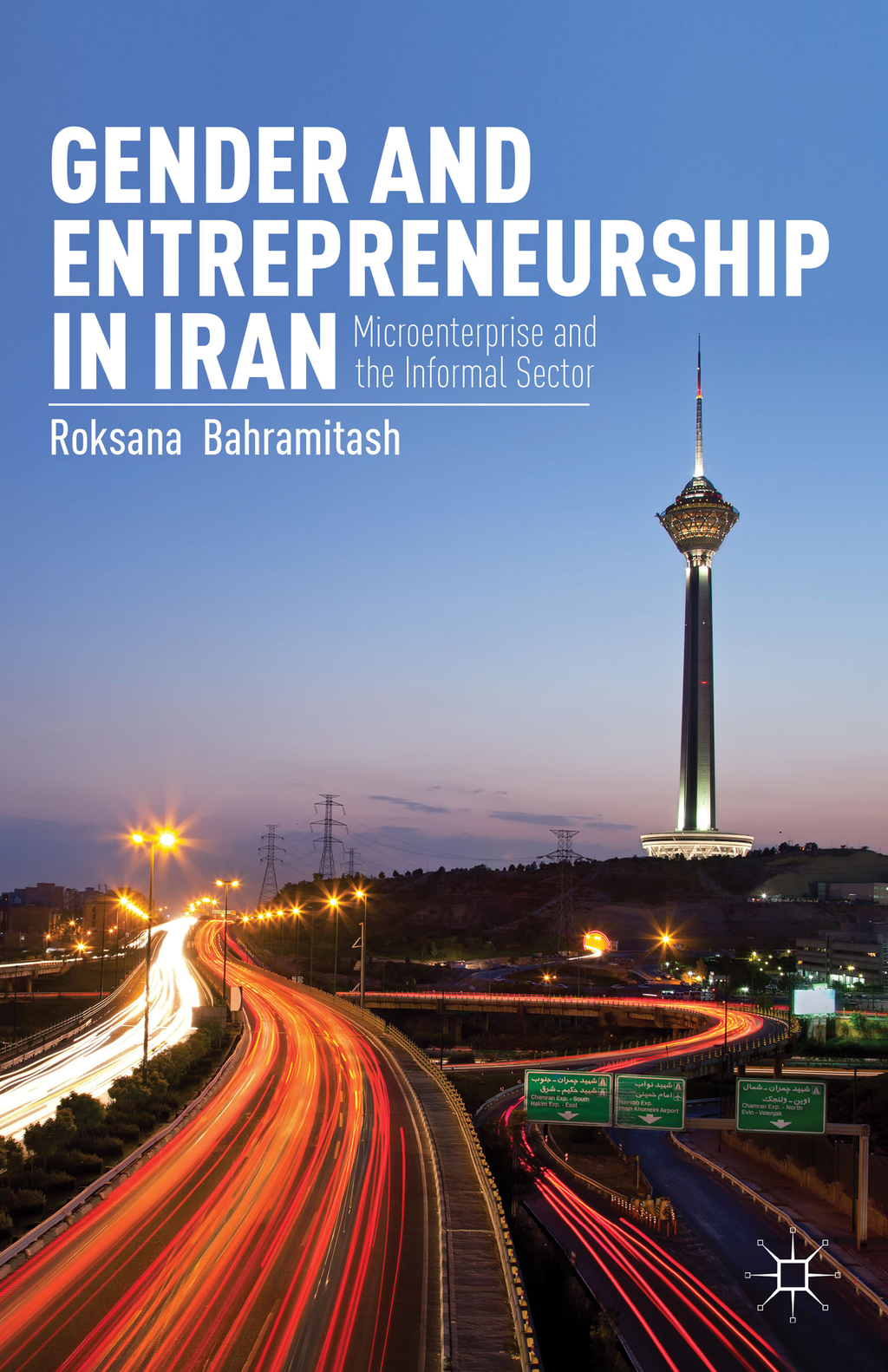 Gender and Entrepreneurship in Iran Microenterprise and the Informal Sector