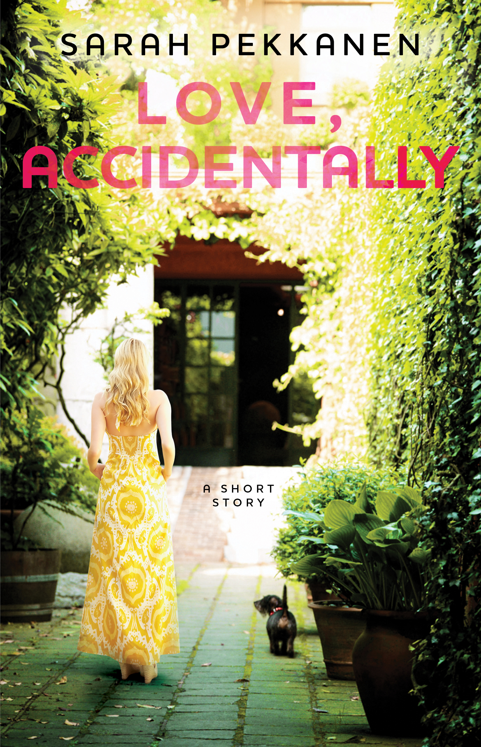 Love, Accidentally By: Sarah Pekkanen