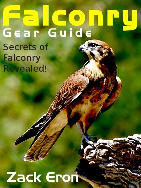 Falconry Gear Guide: Secrets of Falconry Revealed