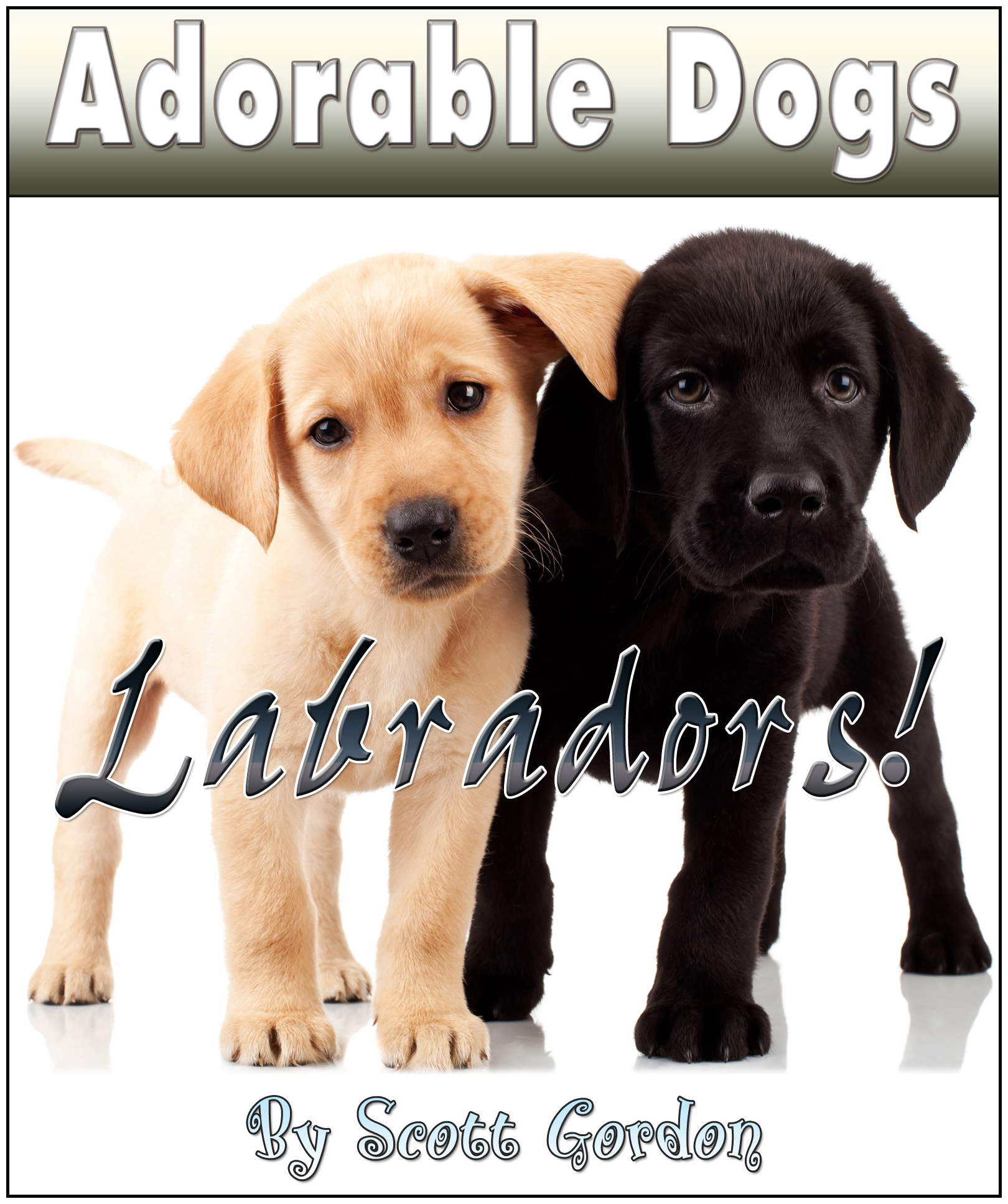 Adorable Dogs: Labradors!
