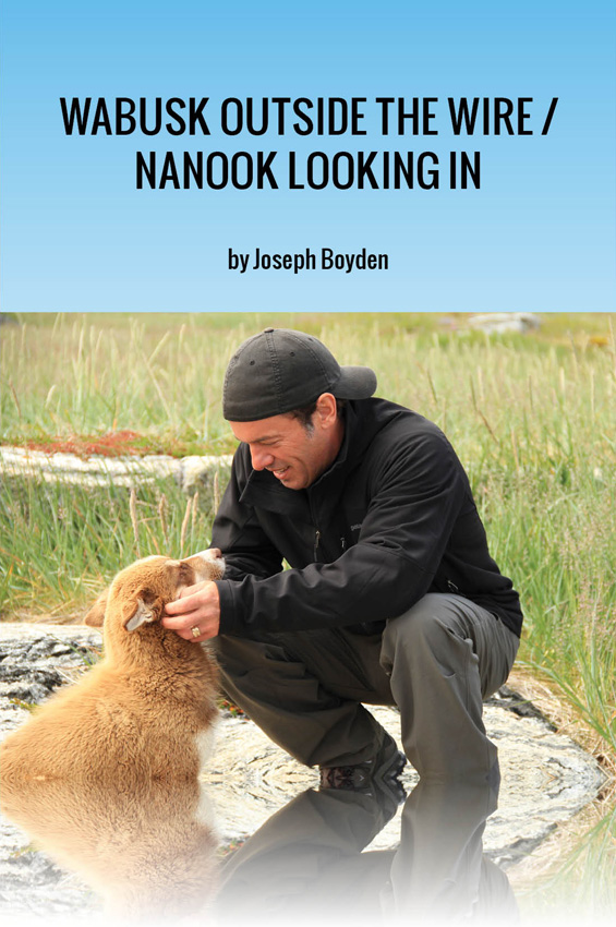 Wabusk Outside the Wire / Nanook Looking In: A Northwords Story By: Joseph Boyden