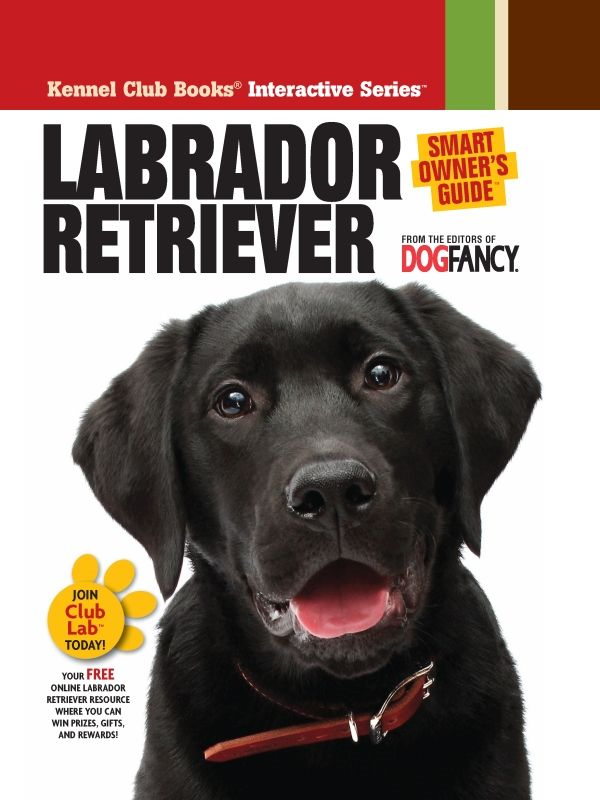 Labrador Retriever By: Dog Fancy Magazine