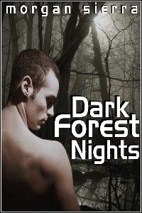 Dark Forest Nights
