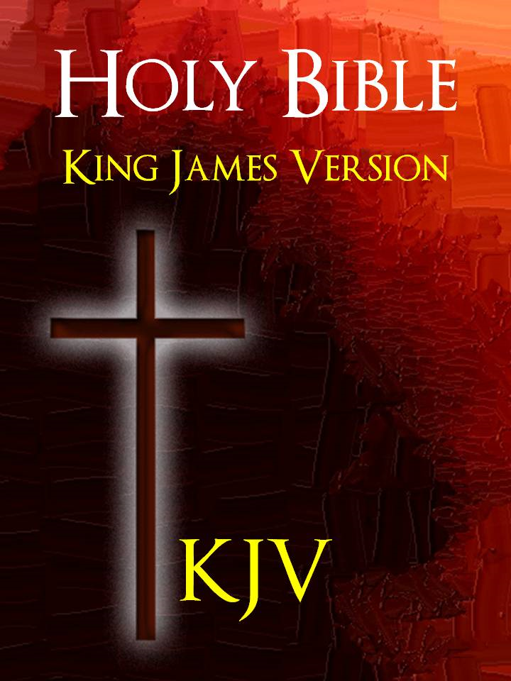BIBLE: THE HOLY BIBLE  - The Authorized King James Version