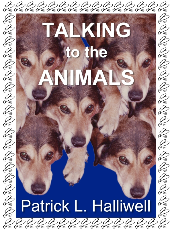 Talking to the Animals
