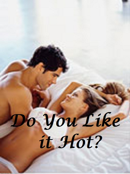 Do You Like it Hot? (Erotic Romance, contemporary romance)