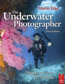 The Underwater Photographer Digital and Traditional Techniques