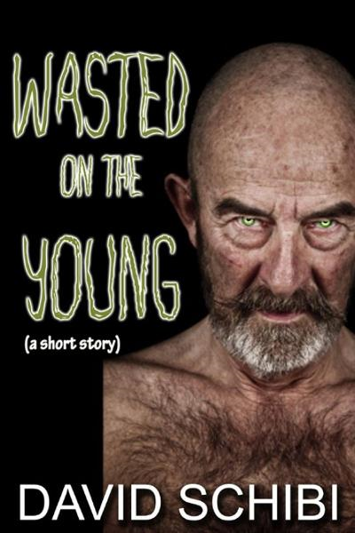 Wasted On The Young By: David Schibi