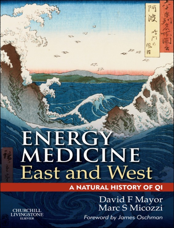 Energy Medicine East and West a natural history of qi