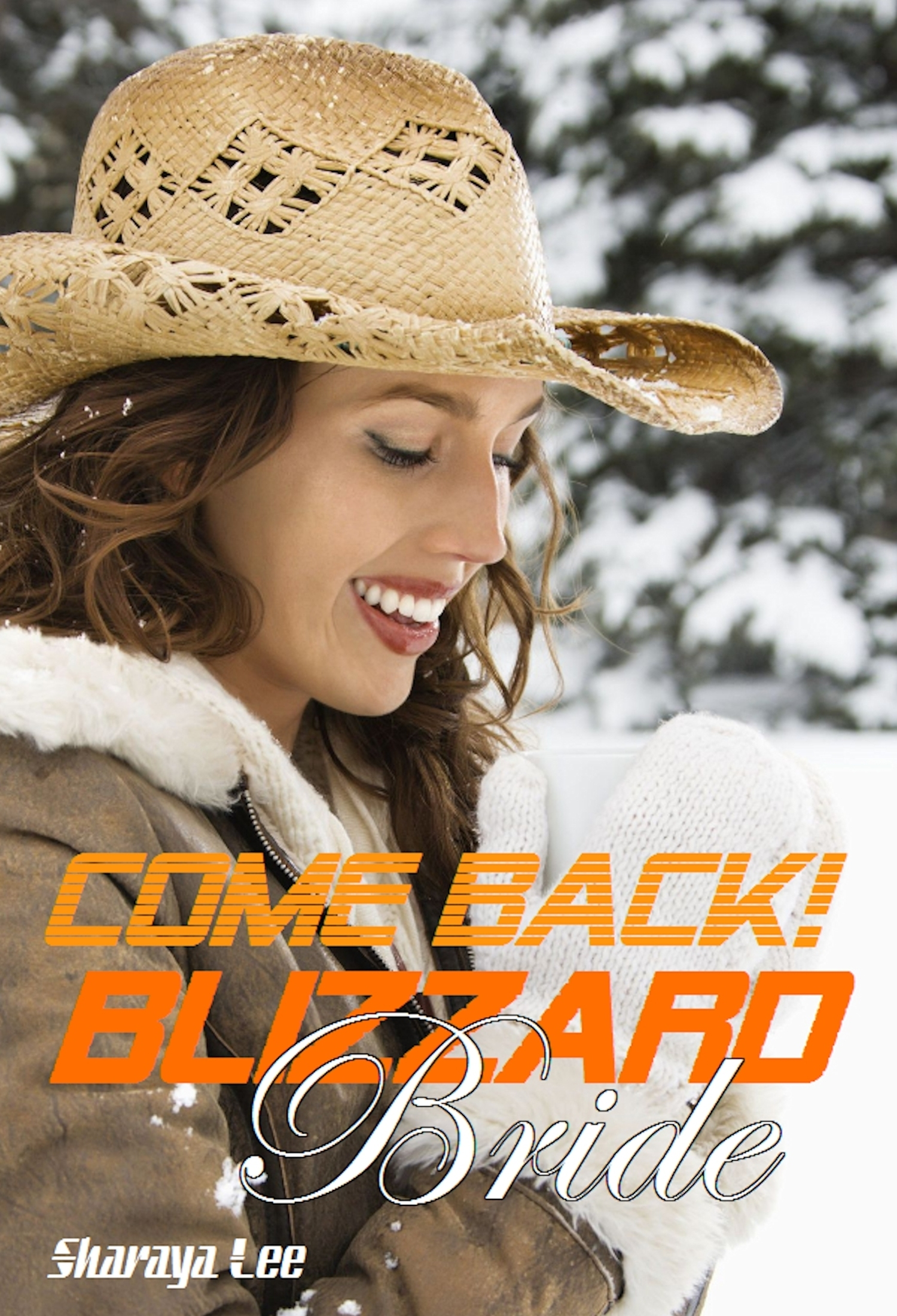 Come Back, Blizzard Bride!: A Western Romance