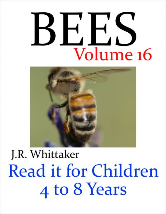 Bees (Read it book for Children 4 to 8 years) By: J. R. Whittaker