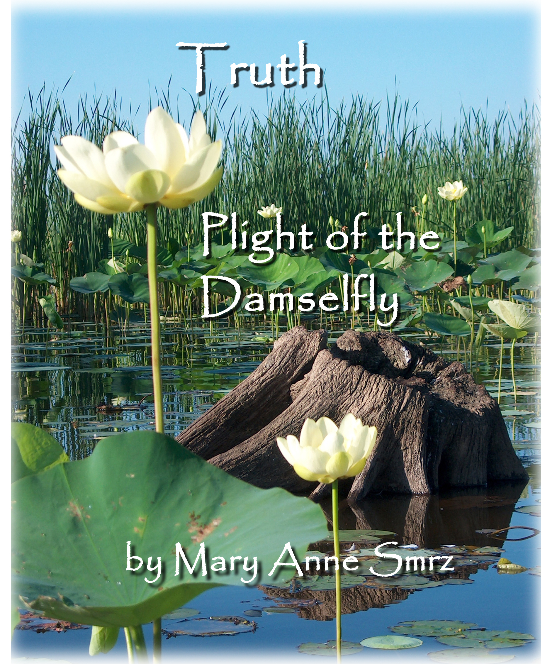 Truth, Plight of the Damselfly