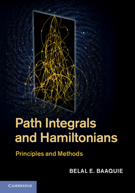 Path Integrals and Hamiltonians Principles and Methods