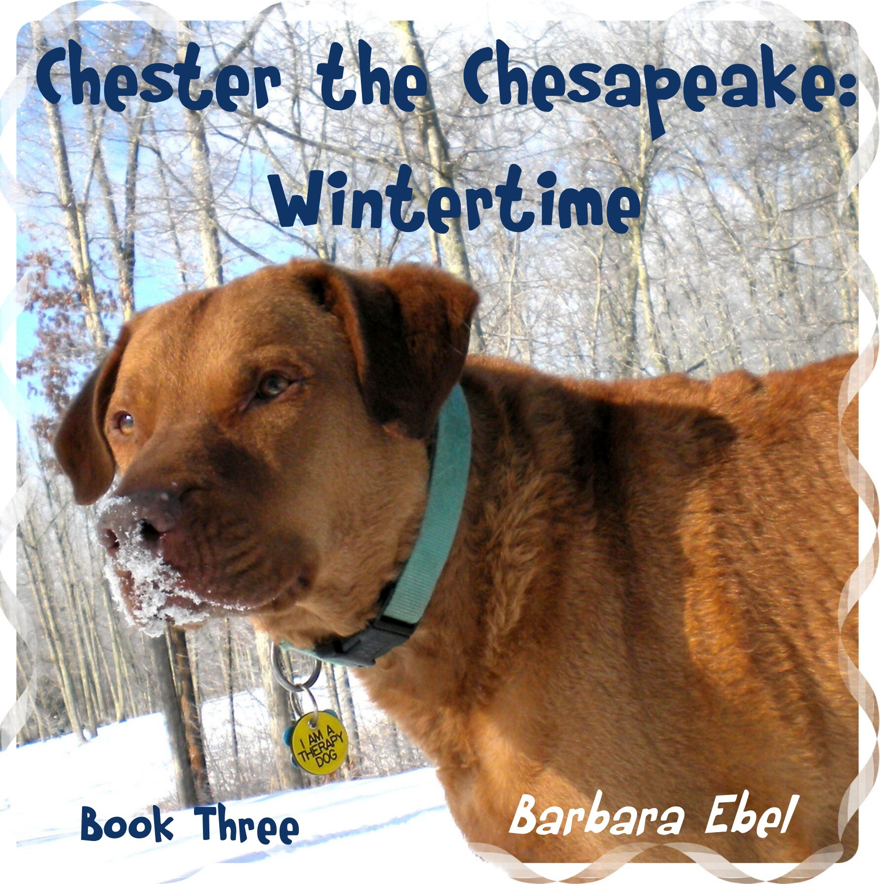 Chester the Chesapeake Book Three: Wintertime