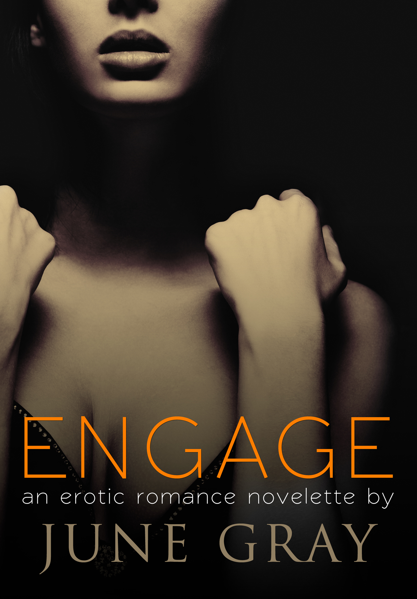 ENGAGE (An Erotic Romance Novelette)(DISARM Series #5) By: June Gray