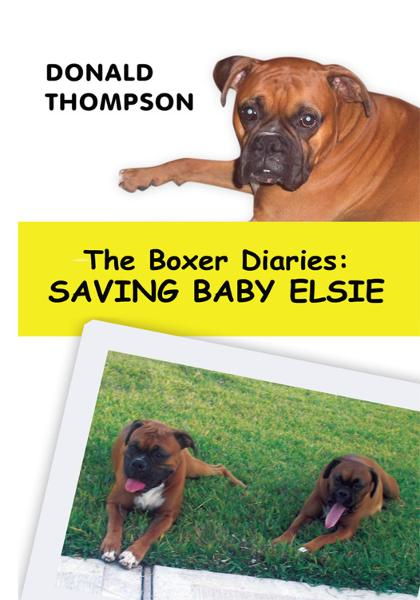 The Boxer Diaries: Saving Baby Elsie