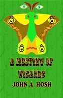 download A Meeting of Wizards book
