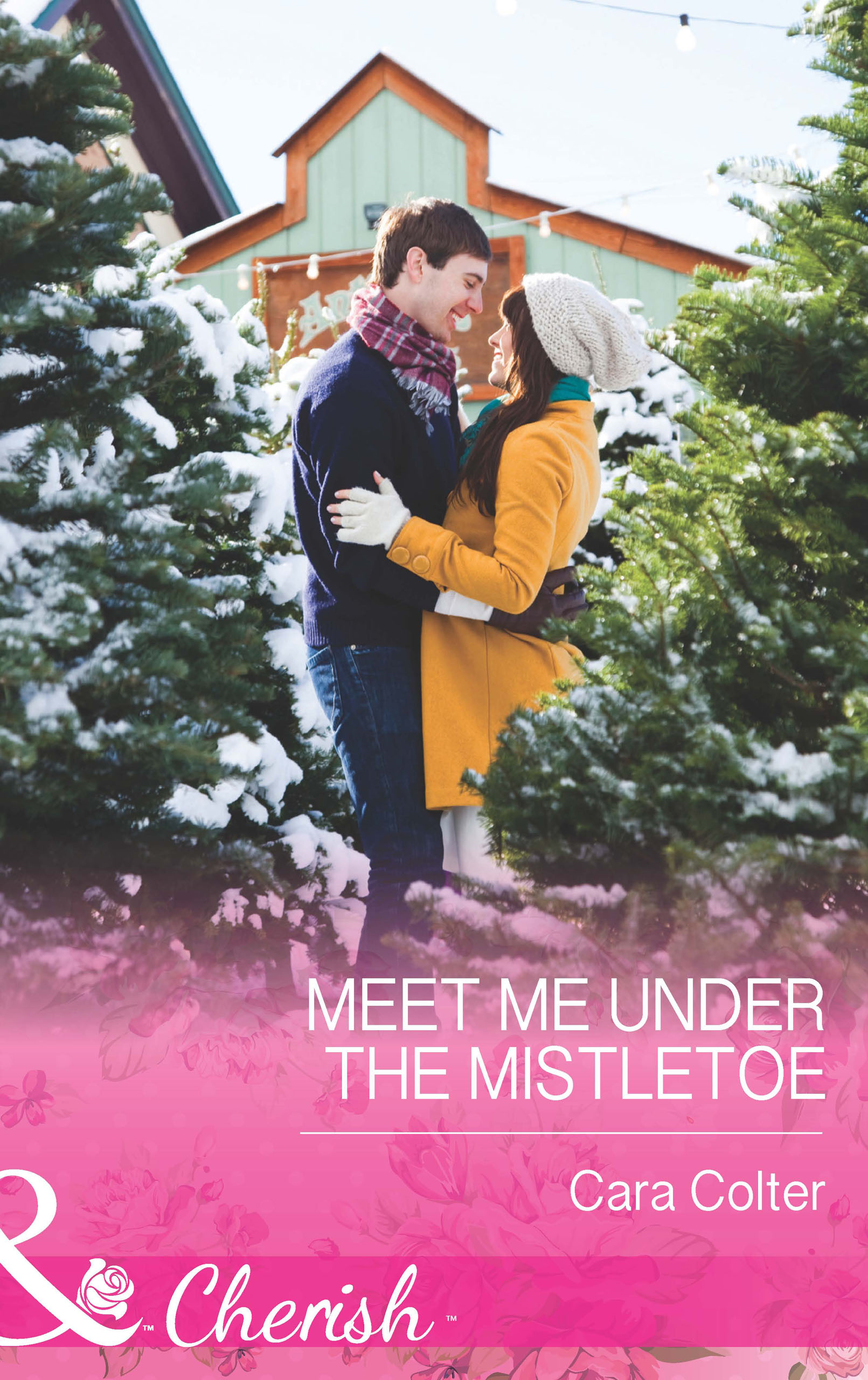Meet Me Under the Mistletoe (Mills & Boon Cherish)