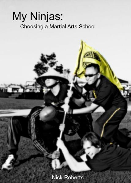 My Ninjas: Choosing A Martial Arts School