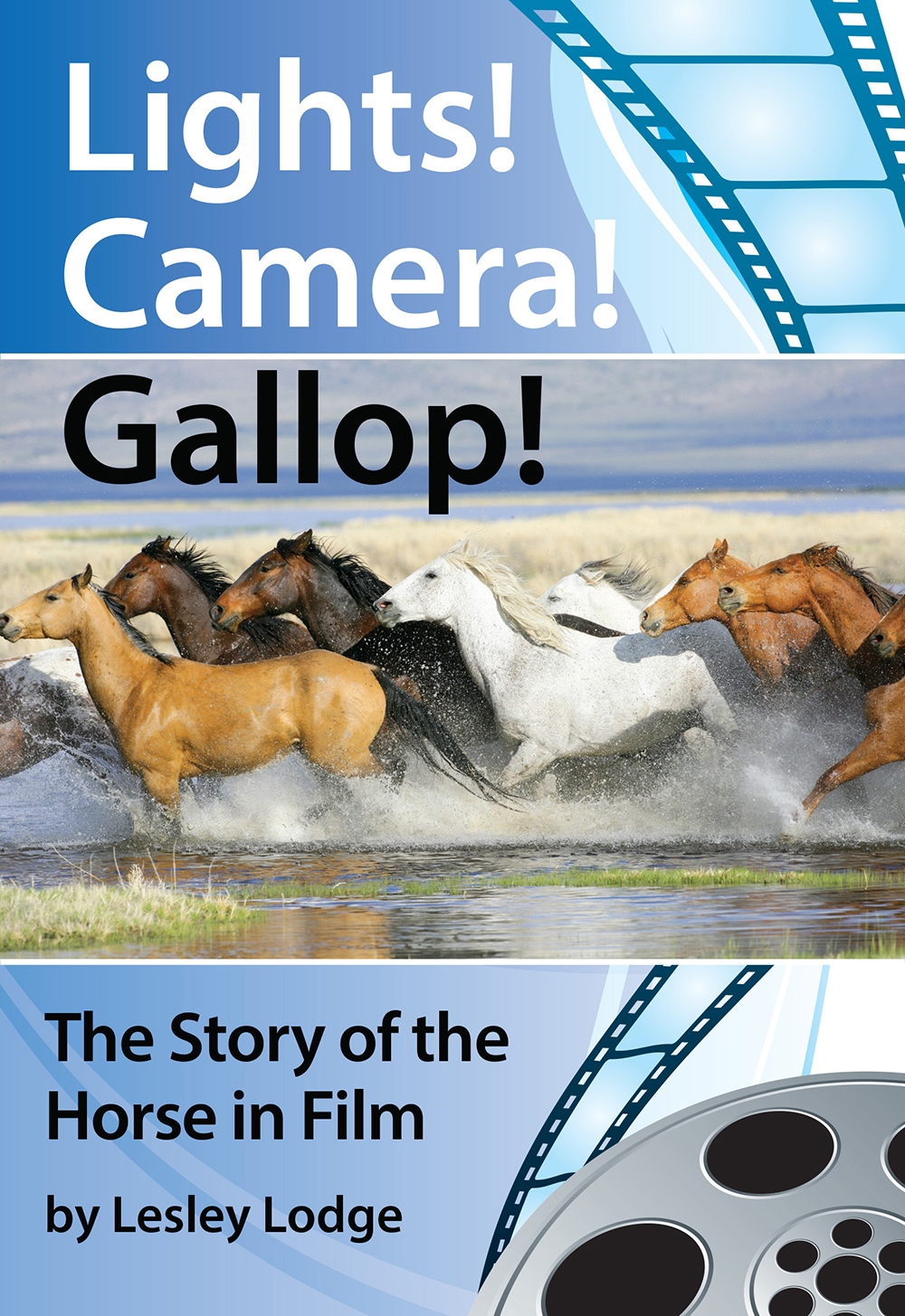 Lights! Camera! Gallop!