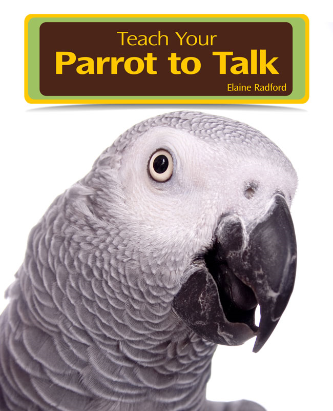 Teaching Your Parrot to Talk
