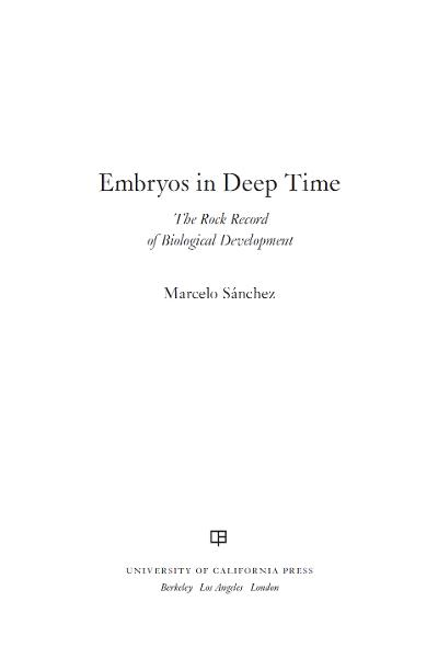 Embryos in Deep Time