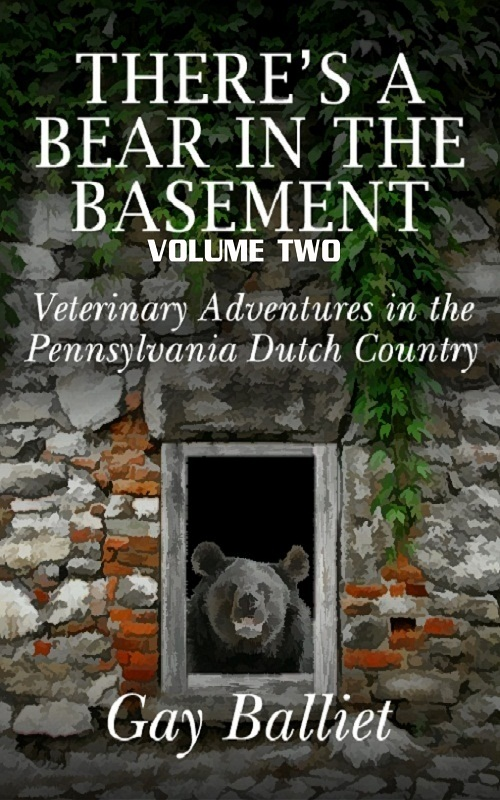 There's A Bear In The Basement - Volume 2 By: Gay Balliet