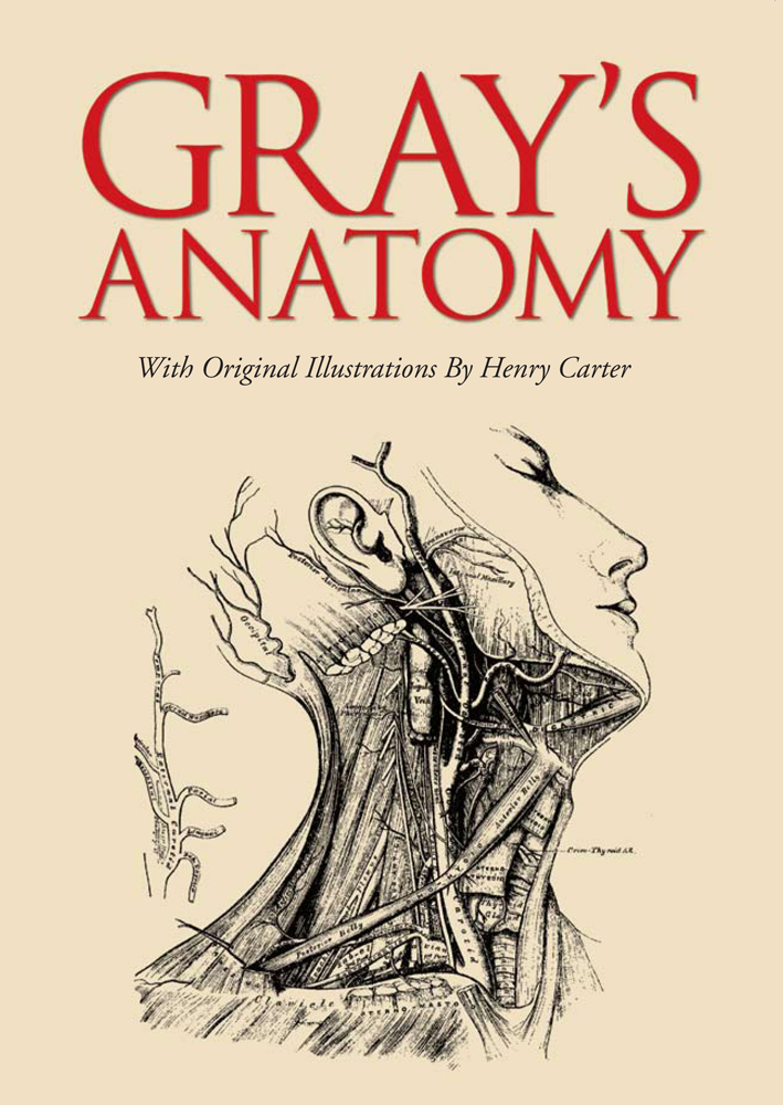 Gray's Anatomy By: Henry Gray
