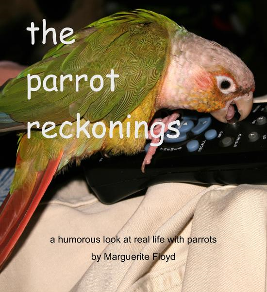 The Parrot Reckonings By: Marguerite Floyd
