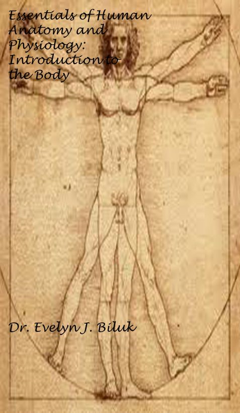 Essentials of Human Anatomy and Physiology: Introduction to the Body By: Dr. Evelyn J Biluk