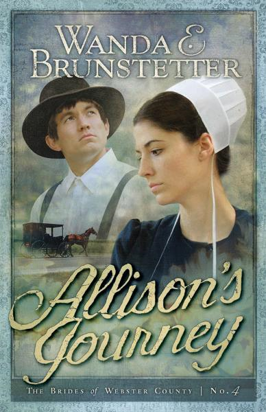 Allison's Journey By: Wanda E. Brunstetter