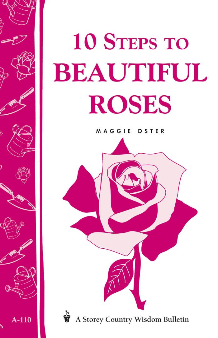 10 Steps to Beautiful Roses By: Maggie Oster