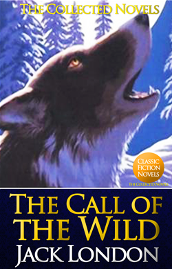 an overview of the call of the wild novel by jack london This collection consists of 30 copies of the book call of the wild and the corresponding novel-tie teachers guide.