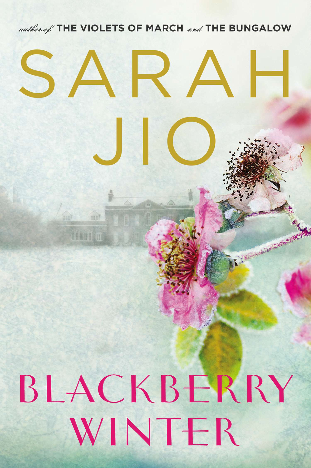 Blackberry Winter By: Sarah Jio