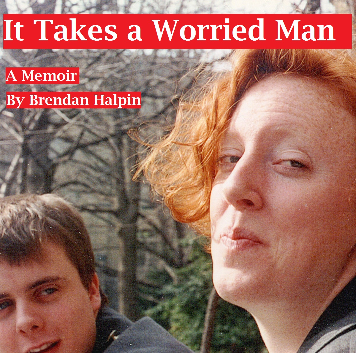 It Takes a Worried Man By: Brendan Halpin