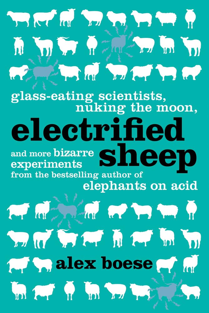 Electrified Sheep By: Alex Boese