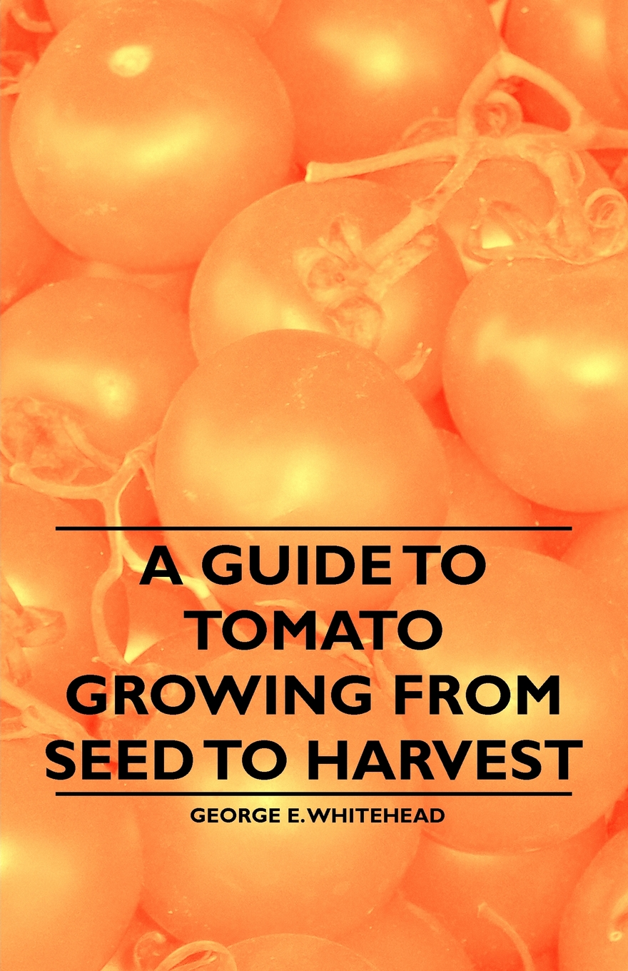 A Guide to Tomato Growing from Seed to Harvest