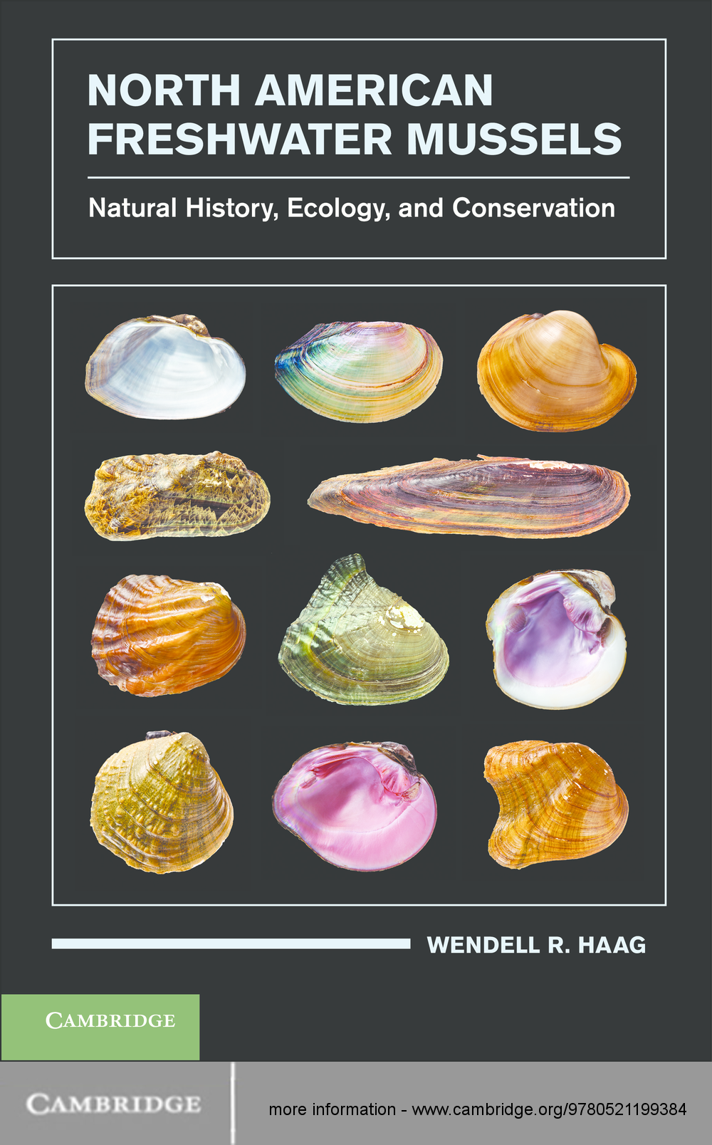 North American Freshwater Mussels Natural History,  Ecology,  and Conservation