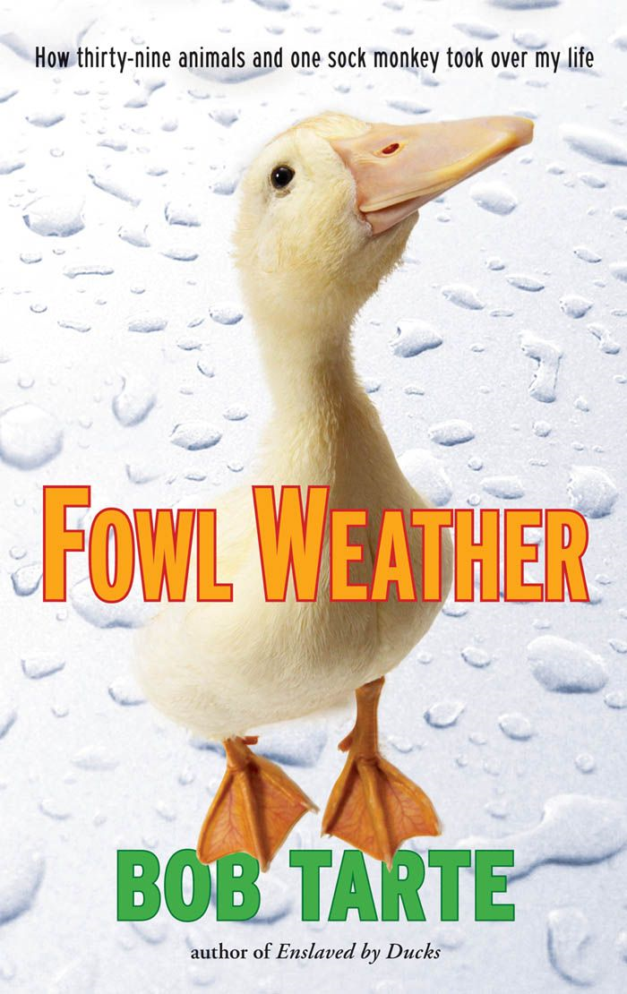 Fowl Weather By: Bob Tarte