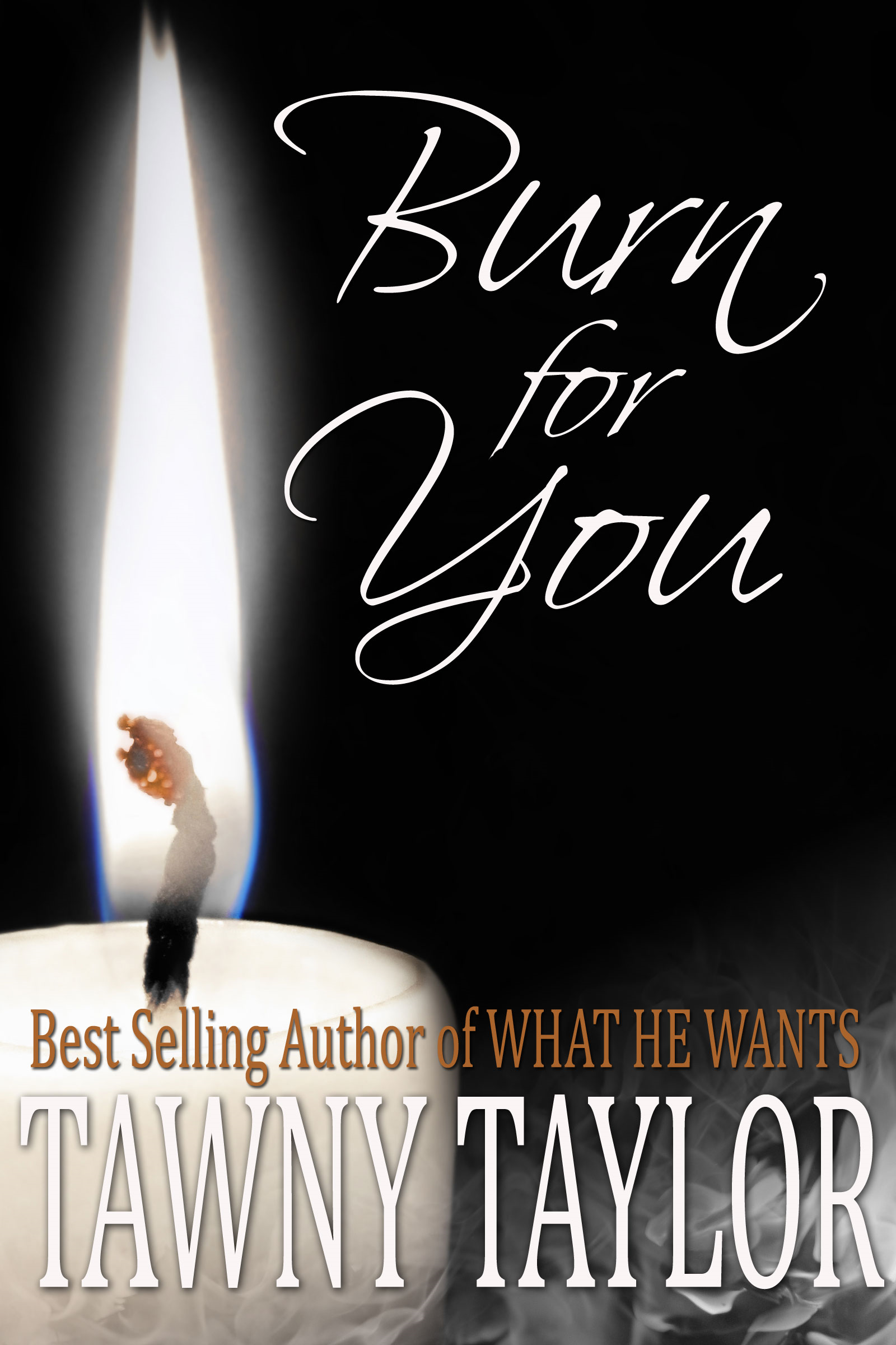 Burn For You, An Erotic Romance Novel