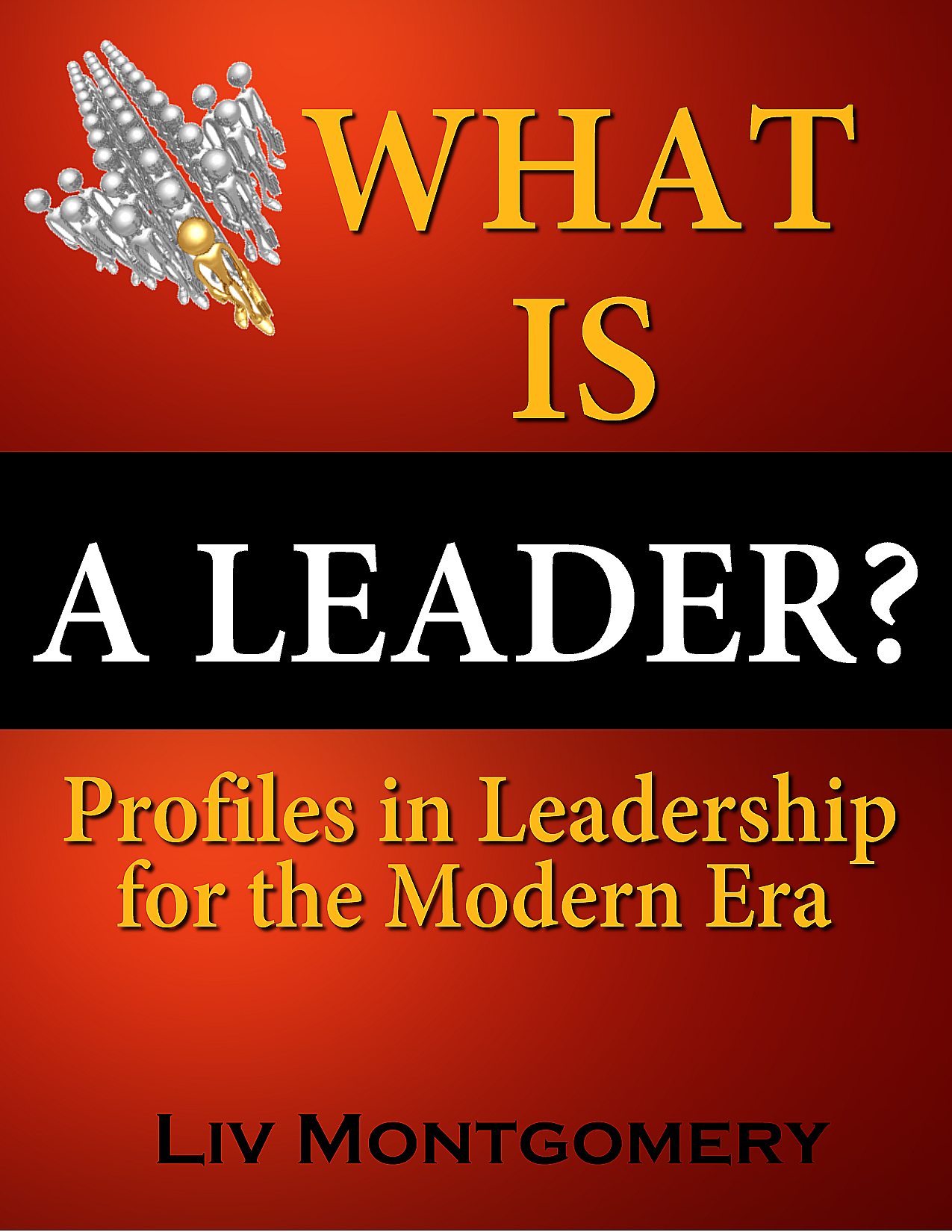 What is a Leader?:Profiles In Leadership for the Modern Era