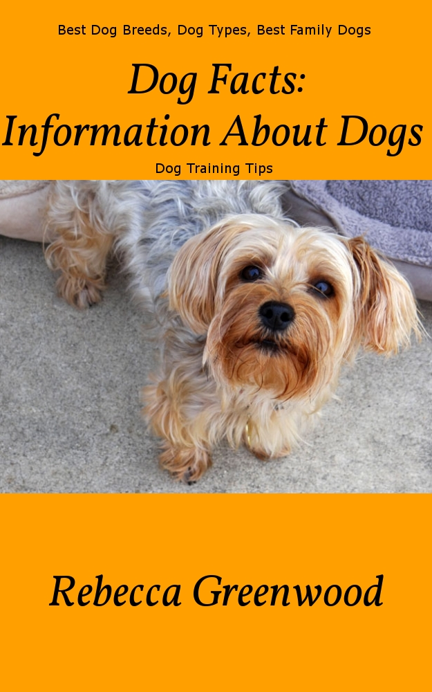 Dog Facts:  Information About Dogs