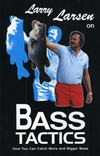 Larry Larsen On Bass Tactics