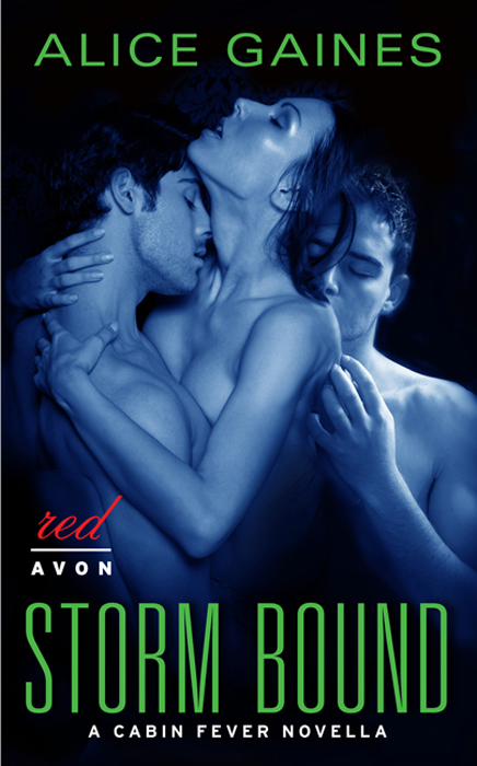 Storm Bound: A Cabin Fever Novella By: Alice Gaines