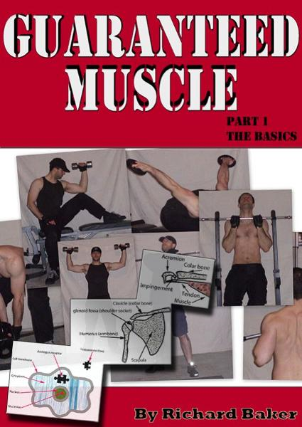 Guaranteed muscle guide: Part 1 The basics By: Richard Baker