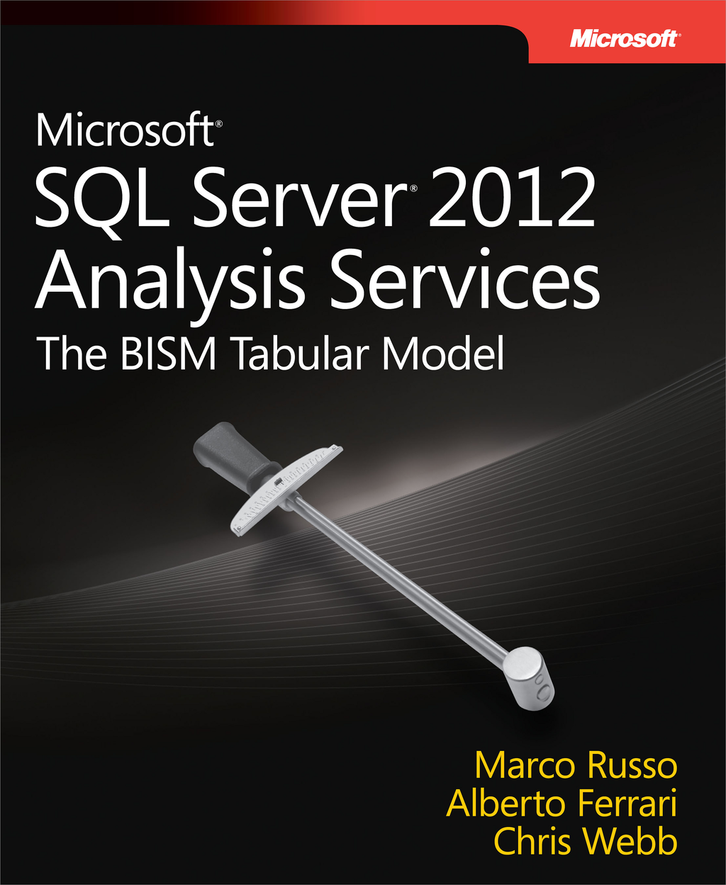 Microsoft SQL Server 2012 Analysis Services: The BISM Tabular Model By: Alberto Ferrari,Chris Webb,Marco Russo