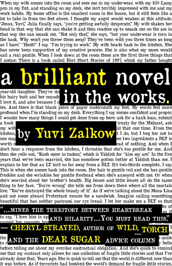A Brilliant Novel in the Works By: Yuvi Zalkow