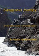 online magazine -  Dangerous Journey