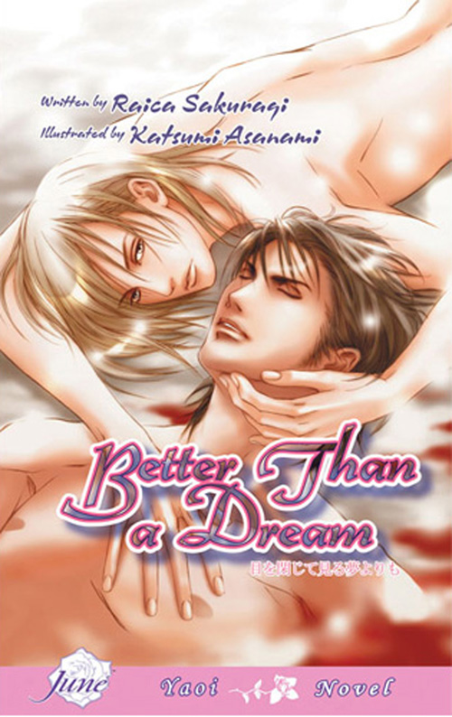 Better Than a Dream (Yaoi novel)