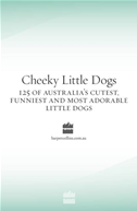 Cheeky Little Dogs: